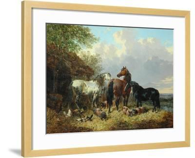 Three Horses with Pigs-John Frederick Herring Jnr-Framed Giclee Print