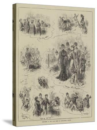 Sketches at the Goat Show at Alexandra Palace-John Jellicoe-Stretched Canvas Print