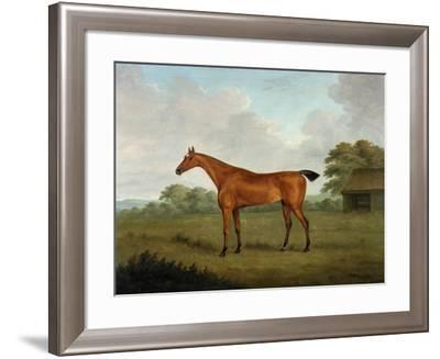 Chestnut Horse in a Landscape, 1815-John Nott Sartorius-Framed Giclee Print