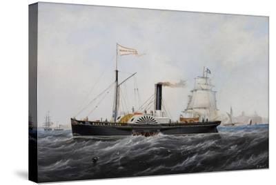 Black Prince-John Scott-Stretched Canvas Print