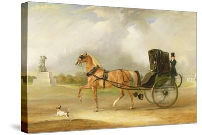 William Massey-Stanley Driving His Cabriolet in Hyde Park, 1833-John E^ Ferneley-Stretched Canvas Print