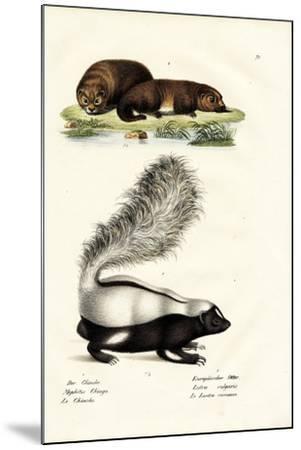 Molina's Hog-Nosed Skunk, 1824-Karl Joseph Brodtmann-Mounted Giclee Print