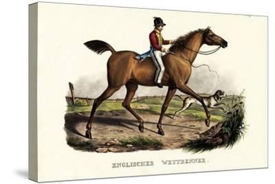 English Racer Horse, 1824-Karl Joseph Brodtmann-Stretched Canvas Print