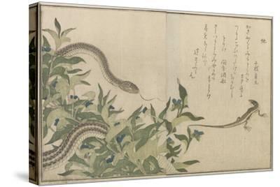 Snake and Lizard, 1788-Kitagawa Utamaro-Stretched Canvas Print