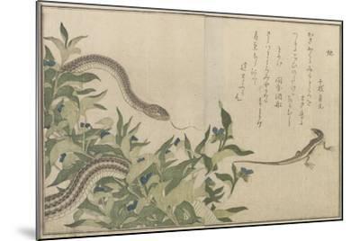 Snake and Lizard, 1788-Kitagawa Utamaro-Mounted Giclee Print