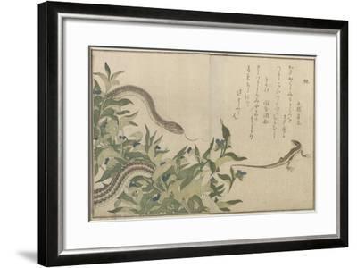 Snake and Lizard, 1788-Kitagawa Utamaro-Framed Giclee Print