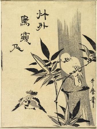 Sparrows on Bamboo Branch, C. 1781-1806-Kitagawa Utamaro-Framed Giclee Print