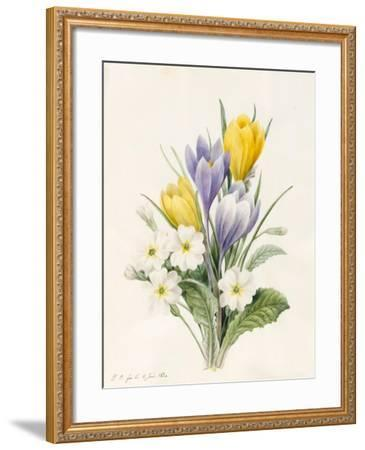 White Primroses and Early Hybrid Crocuses, 1830-Louise D'Orleans-Framed Giclee Print