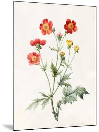 Composite, 1827-Louise D'Orleans-Mounted Giclee Print