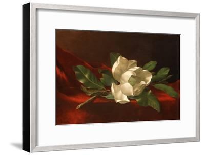 Magnolia, C.1885-95-Martin Johnson Heade-Framed Giclee Print
