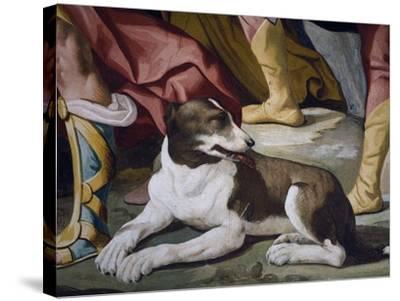 Dog-Luca Ferrari-Stretched Canvas Print