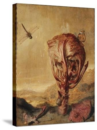 A Red Cabbage, a Snail, a Butterfly, a Dragonfly, a Bee and a Wood Louse in a Landscape-Margarethe de Heer-Stretched Canvas Print