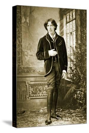 Portrait of Oscar Wilde C. 1882-Napoleon Sarony-Stretched Canvas Print