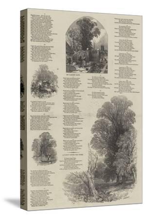 May Lyrics-Myles Birket Foster-Stretched Canvas Print