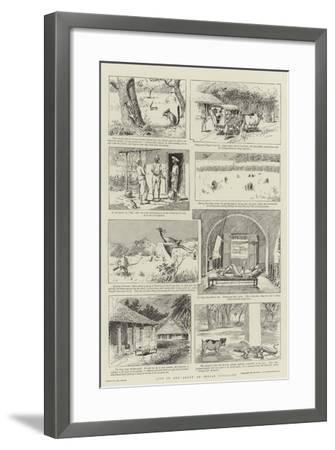 Life in and About an Indian Bungalow-Paul Destez-Framed Giclee Print