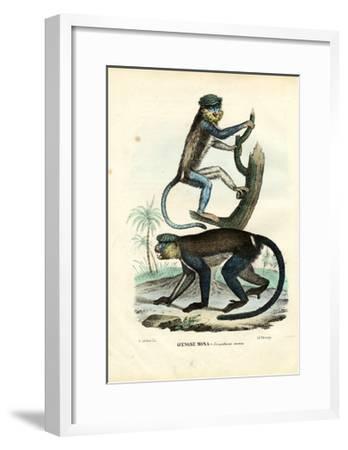 Mona Monkey, 1863-79-Raimundo Petraroja-Framed Giclee Print