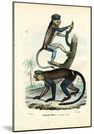 Mona Monkey, 1863-79-Raimundo Petraroja-Mounted Giclee Print