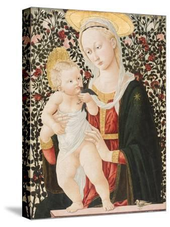 Madonna of the Roses, C.1485-90-Pseudo Pier Francesco Fiorentino-Stretched Canvas Print