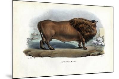Aurochs, 1863-79-Raimundo Petraroja-Mounted Giclee Print
