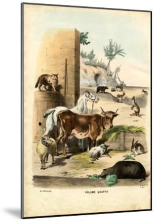 Title Page, 1863-79-Raimundo Petraroja-Mounted Giclee Print