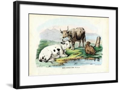 Cattle, 1863-79-Raimundo Petraroja-Framed Giclee Print