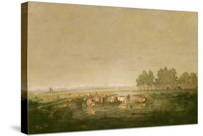Marshland in Les Landes, C.1853-Pierre Etienne Theodore Rousseau-Stretched Canvas Print