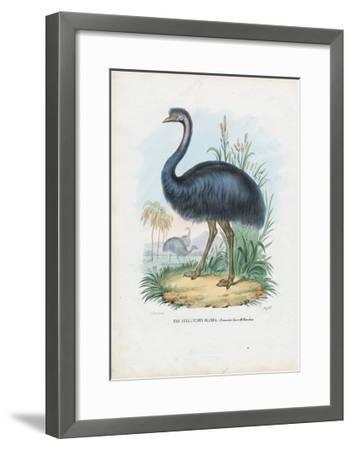 Emu, 1863-79-Raimundo Petraroja-Framed Giclee Print