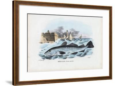 Atlantic Cod, 1863-79-Raimundo Petraroja-Framed Giclee Print