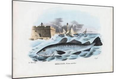 Atlantic Cod, 1863-79-Raimundo Petraroja-Mounted Giclee Print