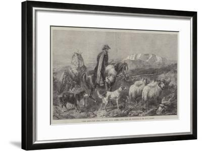 Tired Sheep, Glen Spean, Scotland, from the Exhibition of the Royal Academy-Richard Ansdell-Framed Giclee Print