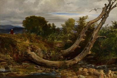 The Heron Disturbed, C.1850-Richard Redgrave-Premium Giclee Print