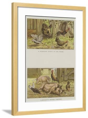 Farmyard Scenes-S^t^ Dadd-Framed Giclee Print