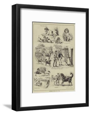 Cottesmore Puppies Put to Walk-S^t^ Dadd-Framed Giclee Print