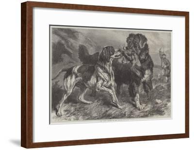 The First Grouse of the Season-Samuel John Carter-Framed Giclee Print