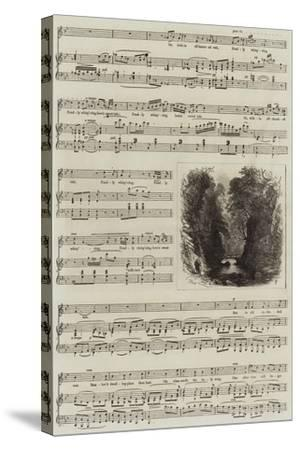 Echo-Samuel Read-Stretched Canvas Print