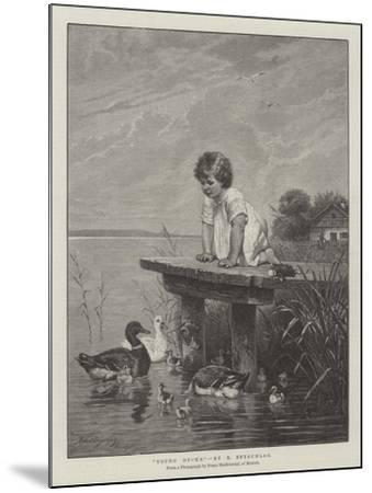 Young Ducks-Robert Julius Beyschlag-Mounted Giclee Print