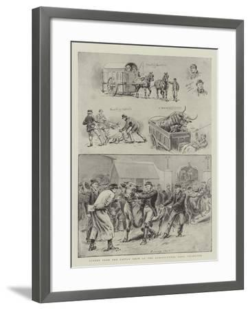 Scenes from the Cattle Show at the Agricultural Hall, Islington-S^t^ Dadd-Framed Giclee Print