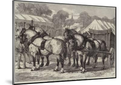 Meeting of the Lincolnshire Agricultural Society at Sleaford, First-Prize Team of Horses-Samuel John Carter-Mounted Giclee Print