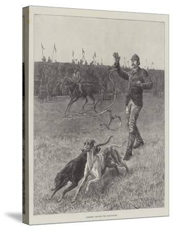 Coursing, Slipping the Greyhounds-S^t^ Dadd-Stretched Canvas Print