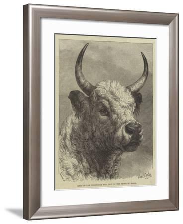 Head of the Chillingham Bull Shot by the Prince of Wales-Samuel John Carter-Framed Giclee Print