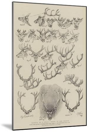Growth of a Stag's Horns in One Season-John Everett Millais-Mounted Giclee Print