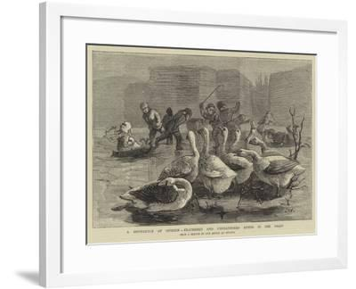 A Difference of Opinion, Feathered and Unfeathered Bipeds in the Frost-Sydney Prior Hall-Framed Giclee Print