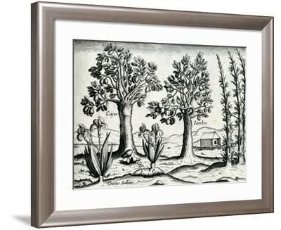 Landscape from 'India Orientalis', 1598-Theodore de Bry-Framed Giclee Print