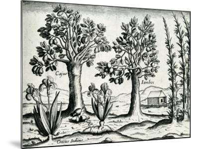 Landscape from 'India Orientalis', 1598-Theodore de Bry-Mounted Giclee Print