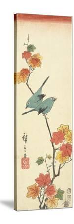 Japanese White-Eyes on a Maple Branch, 1854-Utagawa Hiroshige-Stretched Canvas Print