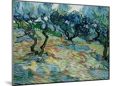 Olive Trees, 1889-Vincent van Gogh-Mounted Giclee Print