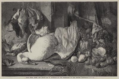 Dead Swan, Game, and Fruit-William Duffield-Premium Giclee Print