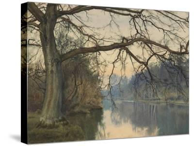 A Great Tree on a Riverbank, 1892 (Pencil, Pen and Black Ink and W/C on Paper)-William Fraser Garden-Stretched Canvas Print