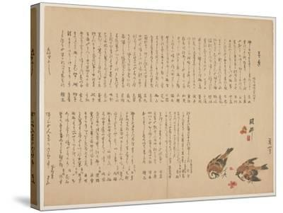 Sparrows and Plum Flowers, 1823-Yokoyama Kazan-Stretched Canvas Print