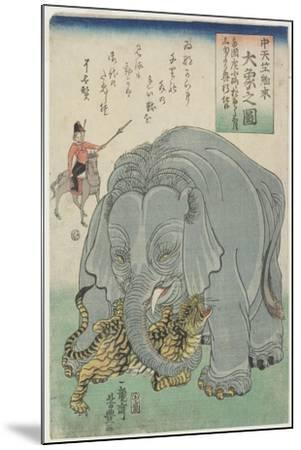 Elephant from India with Tiger, February 1863- Yoshitoyo-Mounted Giclee Print